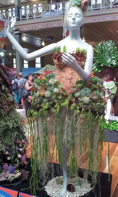 Melbourne Royal International Flower and Garden Show 2013 Vertical Succulent Gardens, Succulent Ideas, Succulent Wall, Succulent Terrarium, Cacti And Succulents, Cactus Plants, Hanging Succulents, Succulents In Containers, Cactus Types