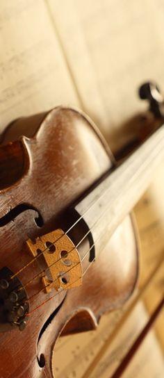 Brown | Buraun | Braun | Marrone | Brun | Marrón | Bruin | ブラウン | Colour | Texture | Pattern | Style | Vintage Violin