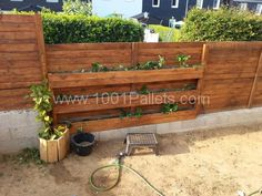20130718 191352 600x450 Palisade wall with strawberries / Palissade avec mur de fraisiers in pallet garden  with pallet Fence