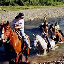 Join Teton Horseback Riding for horseback riding in the Grand Tetons. Our horse camp is the closest to Grand Teton National Park. Trail Riding, Horse Riding, Grand Teton National Park, National Parks, Wyoming Vacation, Horse Camp, Jackson Hole, Horseback Riding, Rafting
