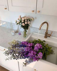 Shade Flowers, Dark Flowers, Pastel Flowers, Simple Flowers, Beautiful Flowers, Buy Flowers, Flowers Perennials, Planting Flowers, Front Porch Flowers