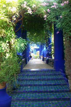 Majorelle garden, Marakech, Morocco: we hear in the air the sweet fragrances here and there the rustling of leaves and the chirping of many birds came refuge there, it stops there, at a bend in front of a building in Moorish charm or Art style decoration.  www.asilahventures.com