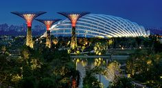 The Flower Dome @ Gardens by the Bay, Singapore