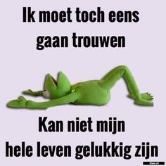 Kermit, Live Love Life, Dutch Quotes, Funny Laugh, Sex And Love, Funny Cartoons, Funny Memes, Man Humor, Sad Quotes