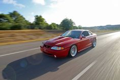Sn95 Mustang, Fox Body Mustang, Coyotes, Sully, Mustangs, Foxes, Cars And Motorcycles, Cherry, Wheels