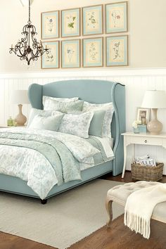 Blue wing bed and washed color palette