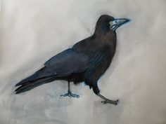 Thelma Chambers Pictures To Draw, Bird, Drawings, Illustration, Animals, Animales, Animaux, Birds, Sketches
