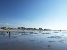 Weltnaturerbe Wattenmeer vor Cuxhaven
