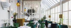Restaurants in Brighton | Fish restaurant Brighton, seafood
