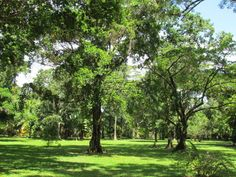 Sittee River Property for sale at Bocatera Bank,Belize