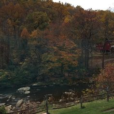Enjoying a fabulous lunch at The Road Toad in Ligonier! Beautiful view of the Loyalhanna Creek! (photo by Jennifer Sopko)