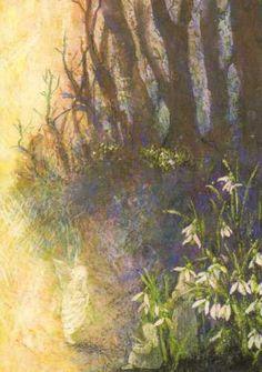 Schneeglöckchen-Elfen Postkarte