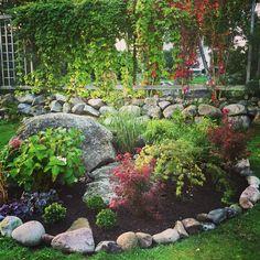 Plantering i japansk stil uppbyggd kring en sten och en stenhäll.