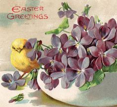 Beautiful Antique Purple Violets Easter by VintagenutsInc on Etsy, $5.50