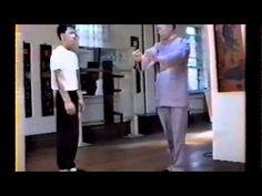 Moy Yat Ving Tsun Wing Chun Biu Jee (ENG) - YouTube