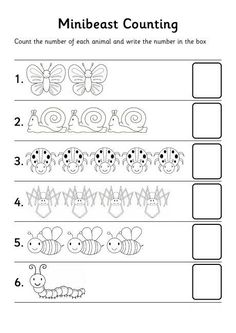 bugs count number worksheet: