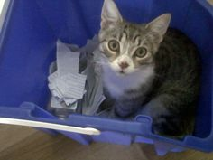 he makes sure we recycle