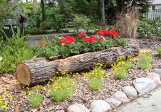 See how you can turn these wooden logs into decorative and useful pieces for your home nad garden.