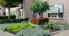 Prairie House, Little Gardens, Backyard Patio Designs, Small Garden Design, Garden Spaces, Permaculture, Vegetable Garden, Organic Gardening, Outdoor Spaces