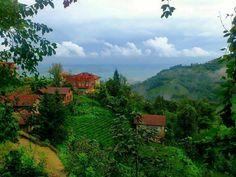 Rize ⚓ Eastern Blacksea Region of Turkey | Östliche Schwarzmeerregion der Türkei #karadeniz #doğukaradeniz #rize #travel #nature #ecotourism #cittaslow #mythological #colchis #thegoldenfleece #amazonwarriors #tzaniti