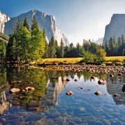 Le virus mortel du parc Yosemite détecté depuis longtemps en Amérique du Nord