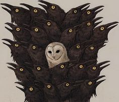 one owl in the middle.