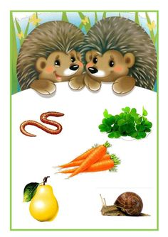 Diy Crafts For Gifts, Fall Crafts, Emotions Preschool, Baby Painting, Cute Hedgehog, Animal Activities, Coloring Book Pages, Forest Animals, Science For Kids