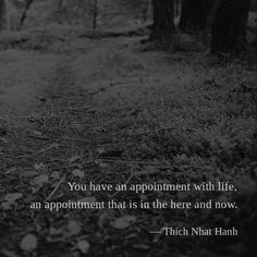 You have an appointment with life, an appointment that is in the here and now. — Thich Nhat Hanh