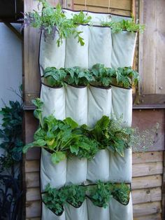 DIY hanging garden  Cute!  NOTE: If growing kitchen herbs, consider planting them in glass or tin can set into the pockets--so chemicals from the non-food-grade pockets won't leach into the plants