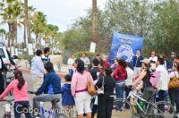 ¡Dolphin Discovery celebra su primer año con una ciclovía en San José! - #LosCabos #Cabo