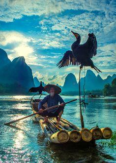 fisherman & cormorant , guilin , china