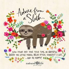 Once she stopped rushing through life, she was amazed how much more life she had time for. Once she stopped rushing through life, she was amazed how much more life she had time for. Baby Sloth, Cute Sloth, Happy Life Quotes, Love Quotes, Happiness Quotes, Crush Quotes, Quotes Quotes, Qoutes, Natural Life Quotes