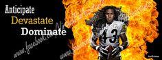 Pittsburgh Steelers. Troy Polamalu 43. Facebook Cover 13-14. www.facebook.com/virtualbizassistants