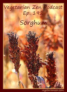 you tried sorghum