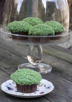 Moss Cupckes