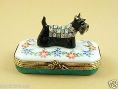 French Limoges Box Scottish Terrier Dog Puppy in Cute Outfit on Floral Box | eBay
