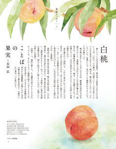 水彩イラストレーター 松野美穂 | 挿絵のイラスト