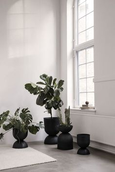 Ferm Living's Hourglass pot elevates your plants to new heights. The pot, as the name suggests, has an unusual hourglass shape. Small Plants, Potted Plants, Indoor Plants, Plants In Pots, Indoor Plant Decor, Water Plants, Succulent Plants, Indoor Garden, Indoor Outdoor