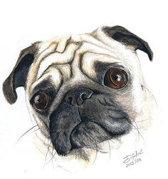 Pug Art <3