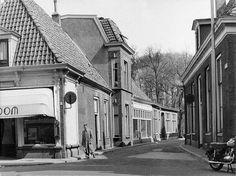 Foto Boom op de hoek van de Hofstraat en Grotestraat Almelo.