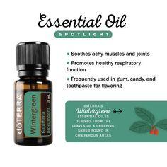 doTERRA Spotlight on Wintergreen essential oil