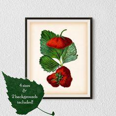 Printable digital art Kitchen printables by RestoredBotanicalArt
