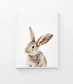 Rabbit Print, Nice Rabbit, Nursery Decor, Baby Animal Print, Girl Nursery Decor, Nursery Animal Prints, Woodland Animal Print, Digital Print by BisPrints on Etsy https://www.etsy.com/listing/461588670/rabbit-print-nice-rabbit-nursery-decor