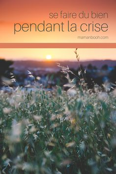 Christian Devotions to Grow Your Faith Christian Devotions, Author, Faith, Reading, Batteries, Coin, Life, Plays, Blogging