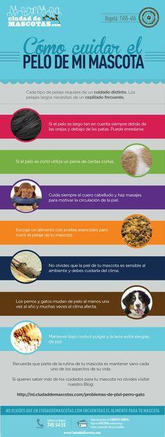 Cuidar el pelo de tu perro y tu gato no es tarea fácil ya que recibe del medio las impurezas y suciedad. Debes tener siempre a la mano un cepillo y cuidar su alimentación.: