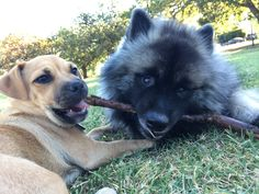 Branch Manager & Assistant Branch Manager http://ift.tt/2lRJ3XB