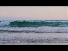 Derek Morrison is local photographer and surfer. This video tells the story of Derek and his daughter, Taya, and the development of Dunedin Light - a weekly . Local Photographers, Video Footage, Waves, Videos, Outdoor, Outdoors, Ocean Waves, Outdoor Games, The Great Outdoors