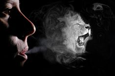 Awesome Smoke Photo Effects (Photoshop Tutorials) ✔ Smoke Art, Up In Smoke, Effects Photoshop, Chest Tattoo, Photo Effects, Photoshop Tutorial, Lion, Graphic Design, Drawings