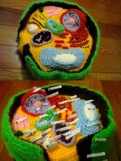 Crocheted Plant Cell by xuanzy on DeviantArt Crochet Animals, Crochet Toys, Knit Crochet, Animal Cell Project, Crochet Projects, Sewing Projects, Cell Model, Plant Cell, Yarn Bombing