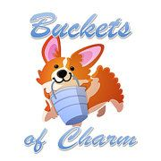 Buckets of Charm by BucketsofCharm on Etsy